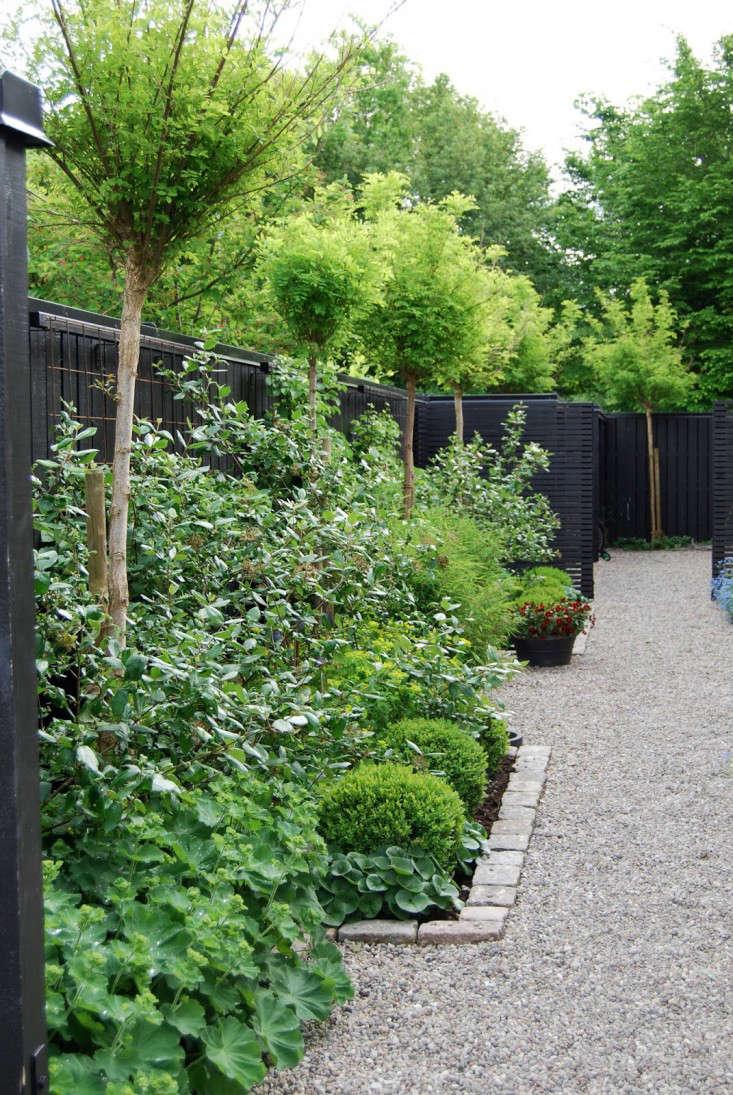 Trend Alert Black Fences Gardenista Sourcebook For