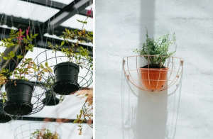 Blueberry Cafe Planter Hangers | Gardenista