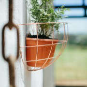 blueberry-cafe-samantha-maber-copper-wall-planter-gardenista