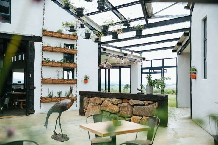 blueberry-cafe-samantha-maber-glass-ceiling-planters-gardenista