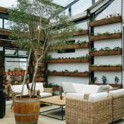 blueberry-cafe-samantha-maber-wall-garden-gardenista