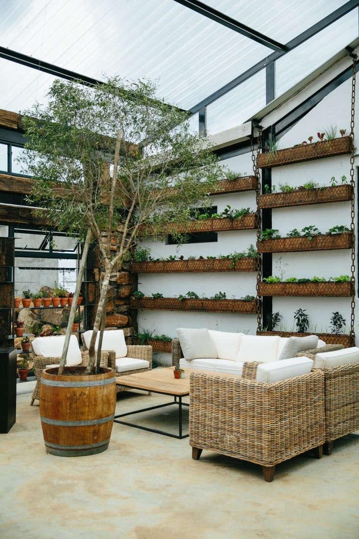 blueberry-cafe-samantha-maber-wall-garden-gardenista