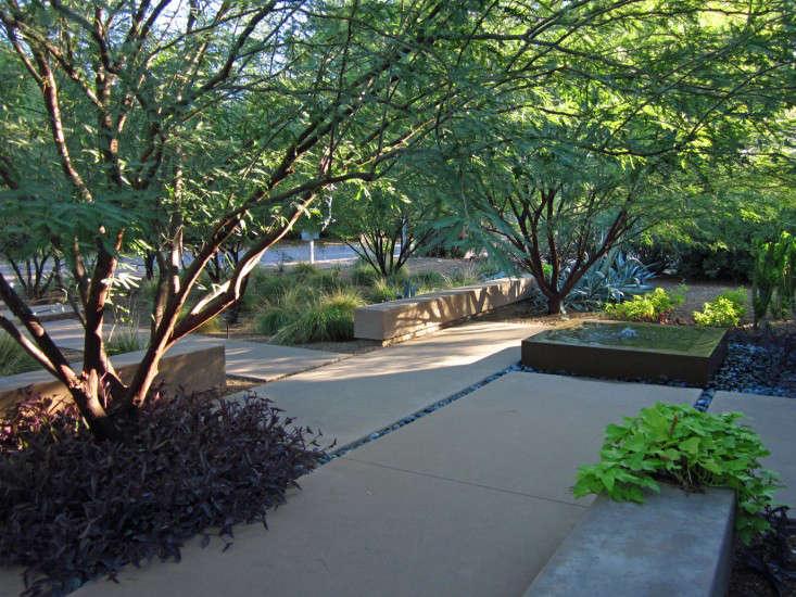 brimming-water-feature-christine-ten-eyck-gardenista
