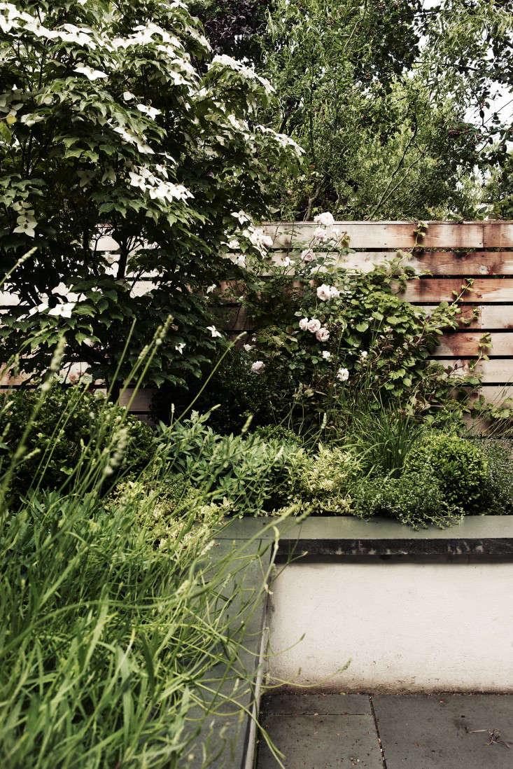 brooklyn-garden-retaining-wall-fence-gardenista