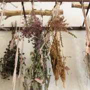 brown-is-a-color-grdn-5-erinboyle-gardenista