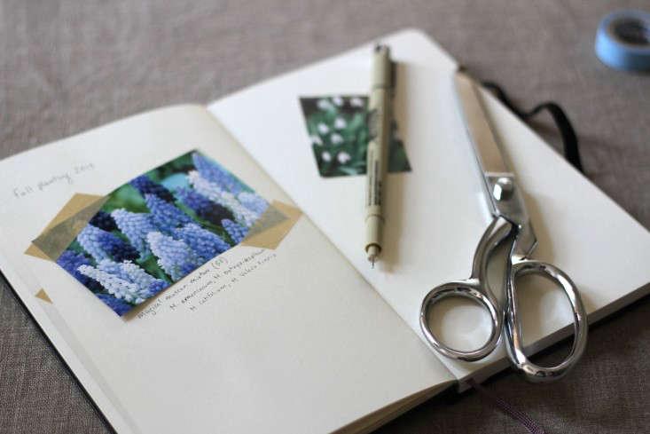 bulbs-make-a-garden-journal-erinboyle-gardenista