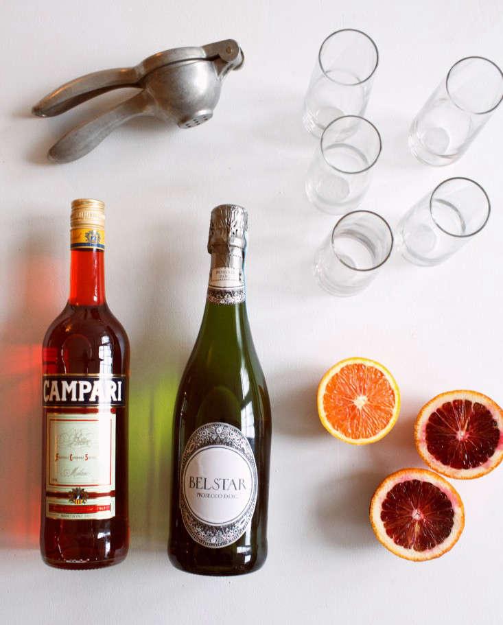 campari-cocktail-valentine-olivia-rae-james-7-gardenista