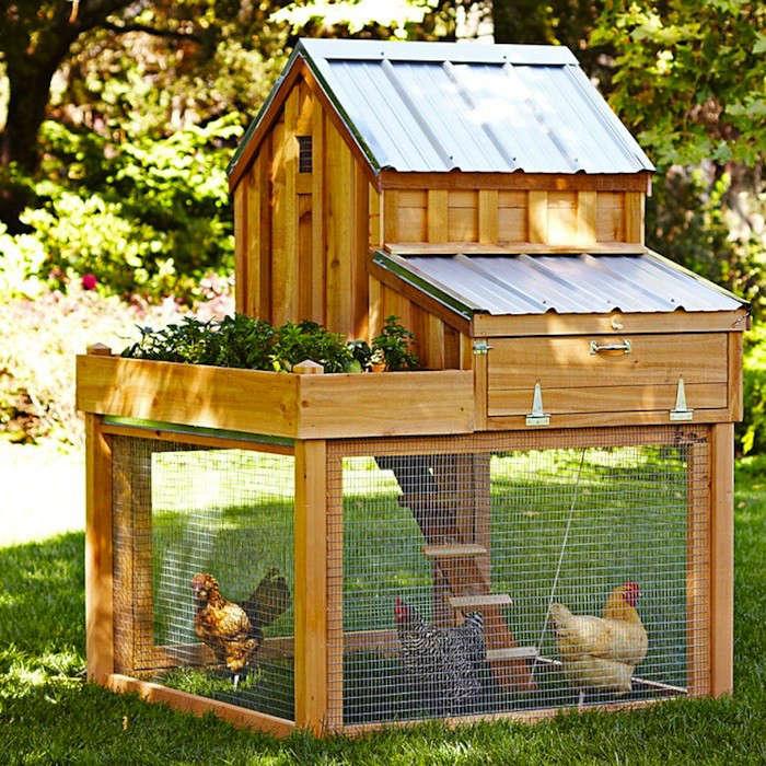 Backyard Chicken Coop Designs backyard chicken coop Cedar Coop With Planter