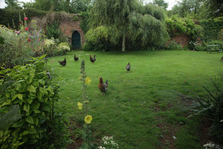 Celiau0027s Garden: At Home With An English Artist And Her Chickens Part 43