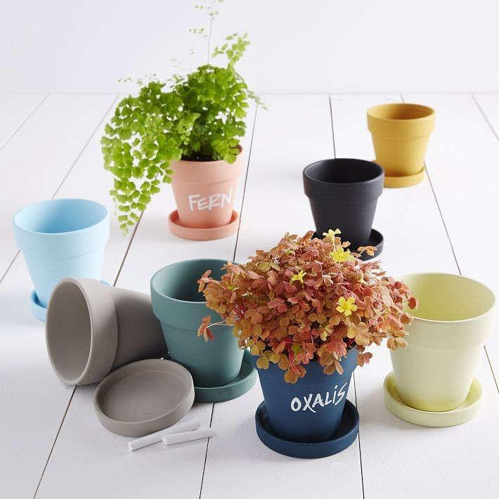 chalk-planters-west-elm-gardenista
