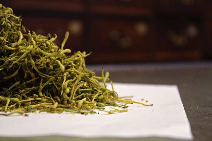 chinese-herbs-chinatown-sf-_-9-Gardenista_edit