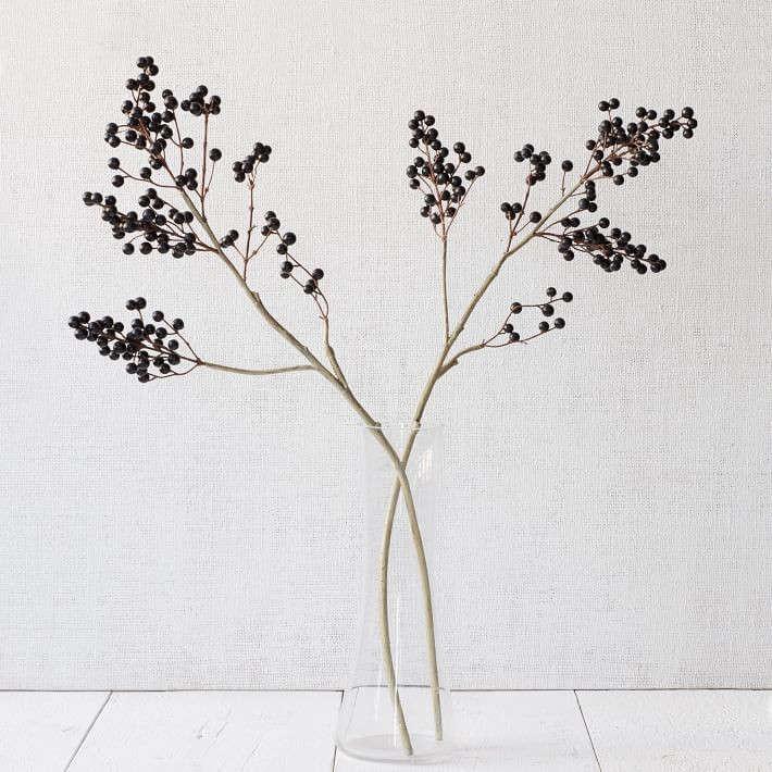 chinese-privet-berries-gardenista