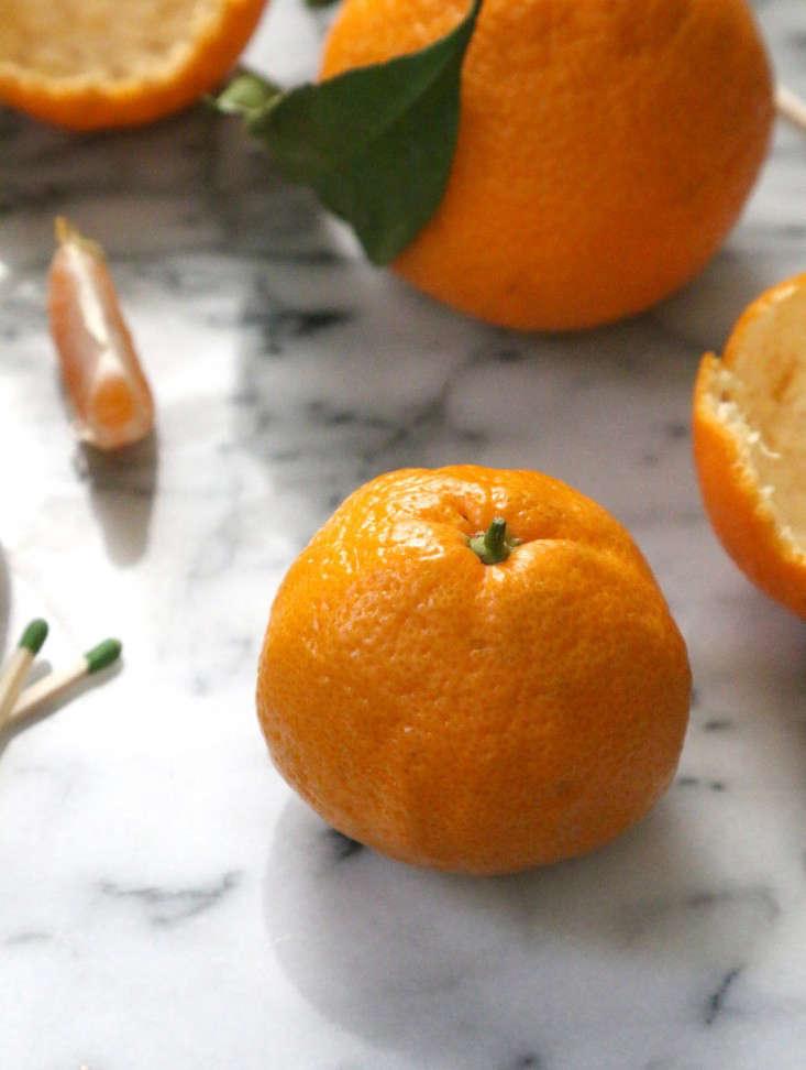 citrus-votives-1-erin-boyle-gardenista