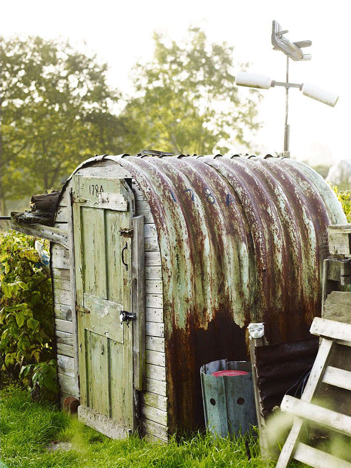 cleve shed allotment