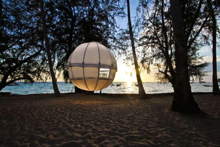 cocoon-tree-dusk-beach