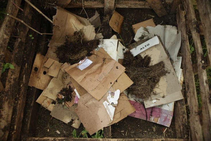 compost-cardboard