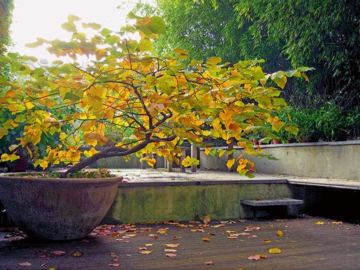 contemporary-gardens-125