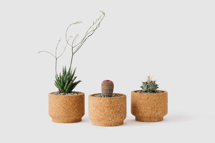cork-pot-hanging-planter-gardenista-3