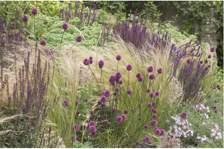 Leaves of grass 9 ways to create curb appeal with for Grasses planting scheme