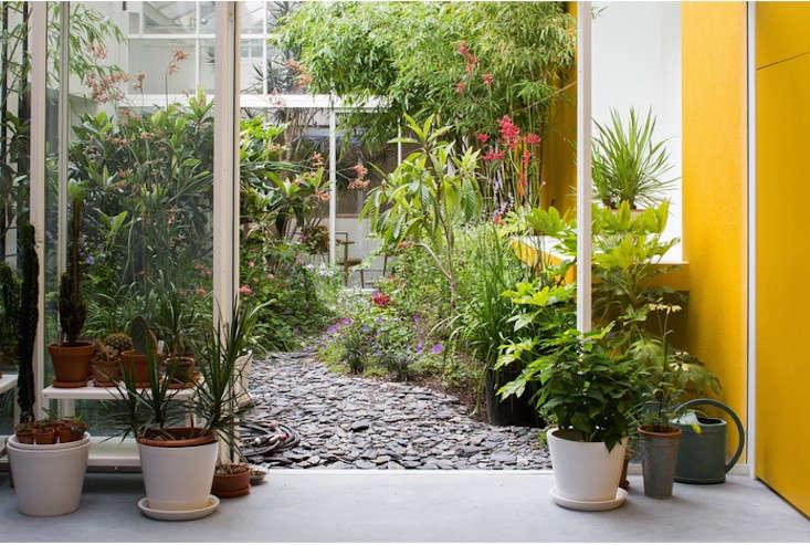 courtyard-garden-bart-and-pieter-rain-forest-antwerp-gardenista