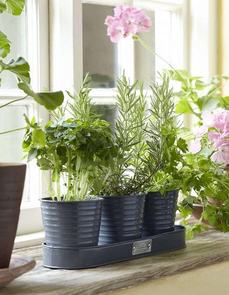 20 under 20 best summer garden tools and accessories gardenista - Windowsill herb pots ...