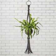 culture-lab-detroit-popup-gardenista-6