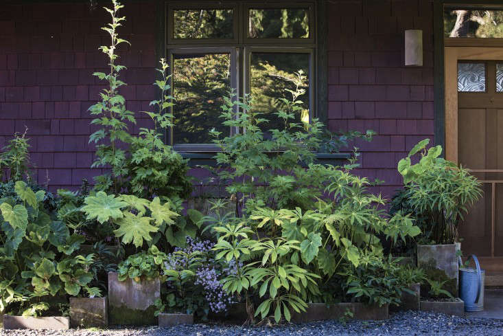 dan-hinkley-house-garden-design-gardenista-12