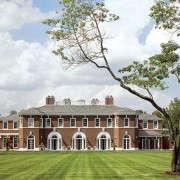 deborah-nevins-single-tree-on-grand-estate-gardenista