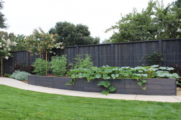 deegan-residence-lifescape-raised-beds