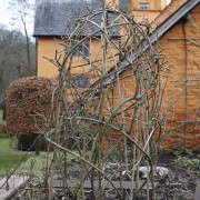 designer-visit-arne-maynard-hazel-dome-gardenista