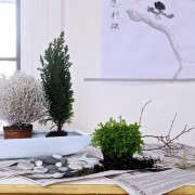 desktop zen garden, supplies, Gardenista