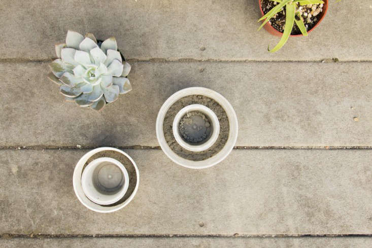 diy-mini-concrete-planter-budget-gardening-gardenista