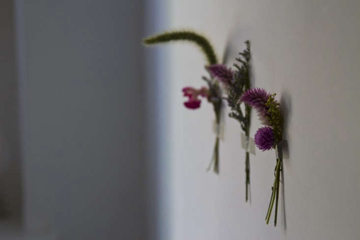 dried-flowers-erin-boyle-gardenista-15