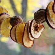 dried-fruit-garland-14-erin-boyle-gardenista