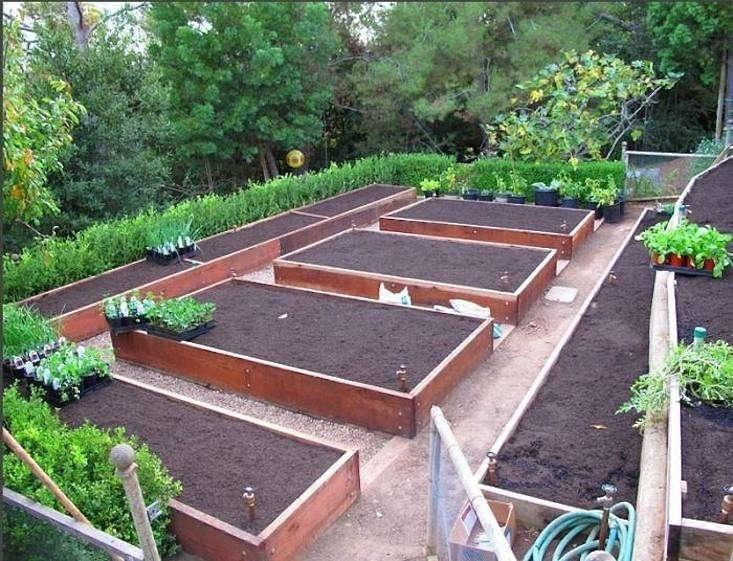 Hardscaping 101 edible gardens gardenista for Edible garden design ideas