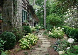 Endless Summer Hydrangea ; Gardenista