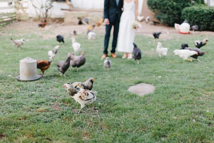 erin-boyle-wedding-gardenista-4