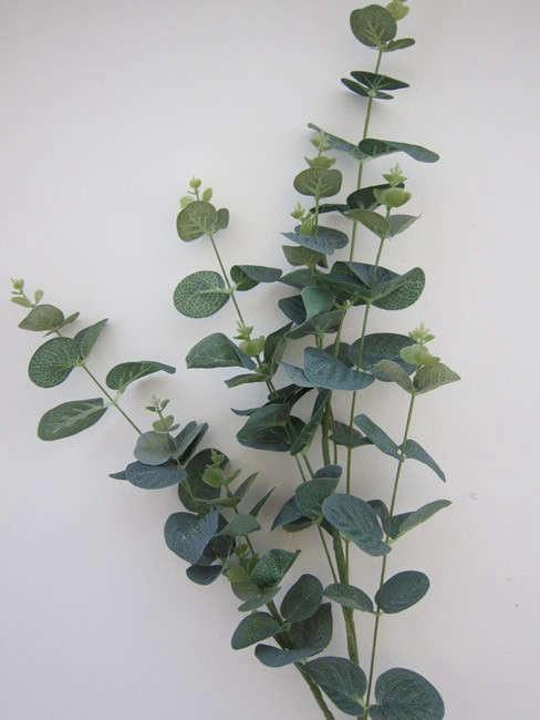 Tall Green Eucalyptus Spray Gardenista