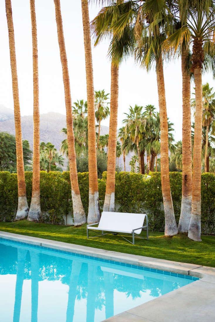 evia-lounge-galanter-jones-palm-trees-gardenista
