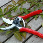 felco-gardening-pruning-shear-red