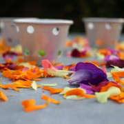 flower-confetti-kendra-geraniums