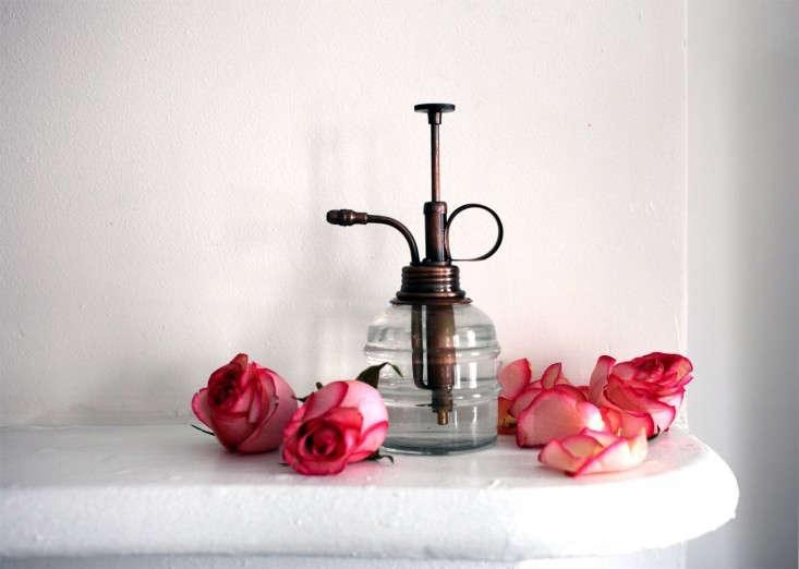 flower-water-4-health-sophia-moreno-bunge-gardenista