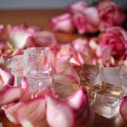 flower-water-health-2-sophia-moreno-bunge-gardenista
