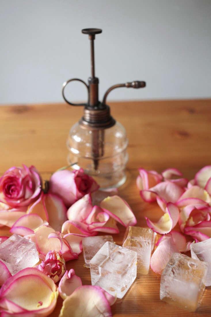 flower-water-health-3-sophia-moreno-bunge-gardenista