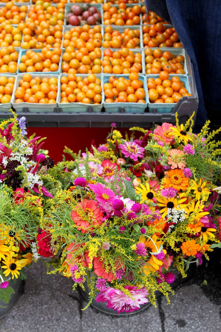 flowers and sungolds_queens county farm flowers_gardenista
