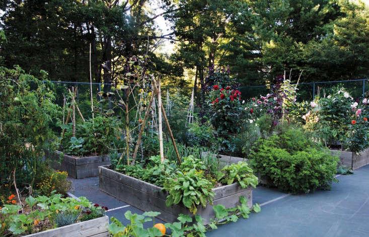 frances-palmer-tennis-court-kitchen-garden-martha-stewart-3-gardenista