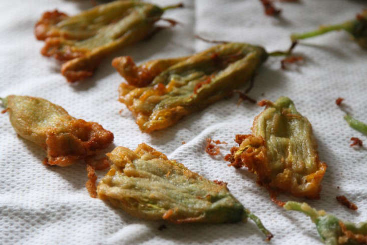 fried squash blossoms on towel – gardenista