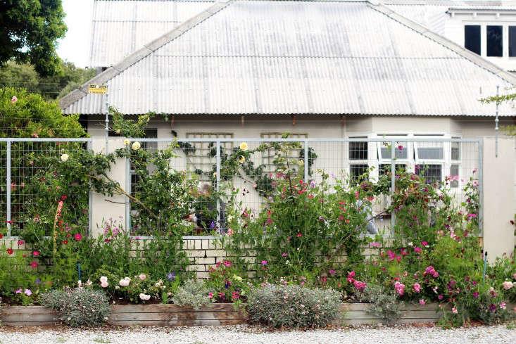 24 creative south african garden landscape ideas for Garden design ideas in south africa