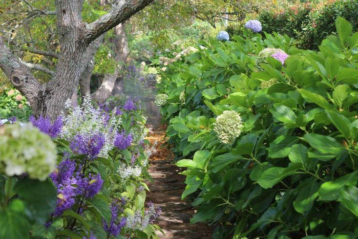 garden-ideas-south-africa-outdoor-dining-marie-viljoen-gardenista-waketheshade