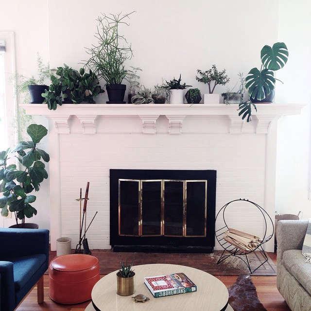gardenista-indoors-casey-keasler